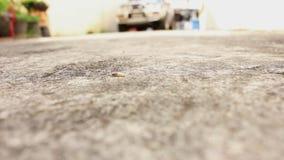 Caminhada do sem-fim no concreto filme