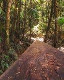 Caminhada do trilho de mão fotografia de stock royalty free