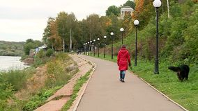 Caminhada dos povos ao longo do passeio vídeos de arquivo