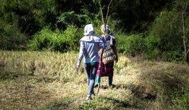 Caminhada dos povos a trabalhar Imagem de Stock Royalty Free