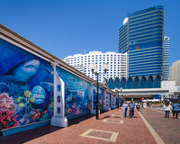 Caminhada dos visitantes ao longo do passeio em Darling Harbour Imagens de Stock