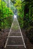 Caminhada em Costa Rica Foto de Stock Royalty Free