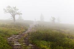 Caminhada em Lapland Fotografia de Stock Royalty Free