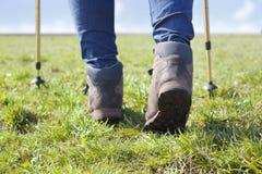 Caminhada em um campo Imagem de Stock Royalty Free