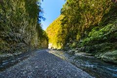 Caminhada em uma garganta de Sutiã de La Liso em Reunion Island Fotografia de Stock
