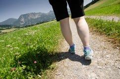 Caminhada em uma maneira com prado e flores Imagem de Stock