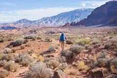 Caminhada em Ut? imagens de stock royalty free