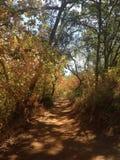Caminhada escondida Califórnia da natureza do parque estadual das quedas Fotografia de Stock