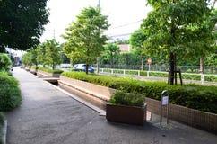 Caminhada lateral Imagem de Stock