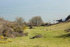 Caminhada litoral imagens de stock royalty free