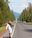 Caminhada longa Fotografia de Stock