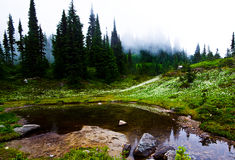 Caminhada mais chuvosa Foto de Stock Royalty Free