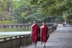 Caminhada não identificada das monges em torno do lago Kandawgyi imagem de stock royalty free