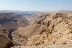 Caminhada na área de Mar Morto em Israel Imagens de Stock Royalty Free