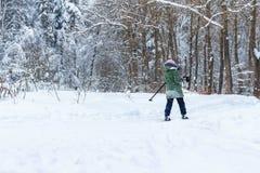 Caminhada na floresta do inverno imagem de stock royalty free