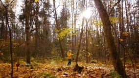 Caminhada na floresta do outono video estoque