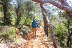 Caminhada na floresta imagem de stock royalty free