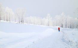Caminhada na montanha da neve Foto de Stock Royalty Free