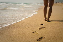Caminhada na praia Imagens de Stock Royalty Free