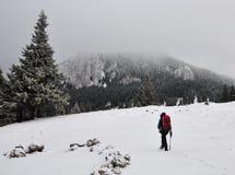 Caminhada nas montanhas no tempo de inverno Imagem de Stock