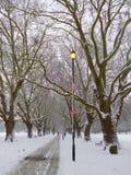 Caminhada nevado fotografia de stock royalty free