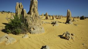 Caminhada no deserto dos pináculos video estoque