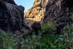 Caminhada no desfiladeiro Masca Console vulcânico Montanhas da ilha de Tenerife, Ilhas Canárias, Espanha imagem de stock royalty free