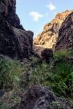 Caminhada no desfiladeiro Masca Console vulcânico Montanhas da ilha de Tenerife, Ilhas Canárias, Espanha imagens de stock royalty free