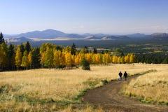 Caminhada no Flagstaff o Arizona da cor da queda Imagens de Stock Royalty Free