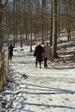 Caminhada no inverno fotografia de stock