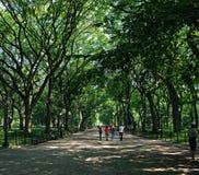 Caminhada no parque Imagens de Stock Royalty Free