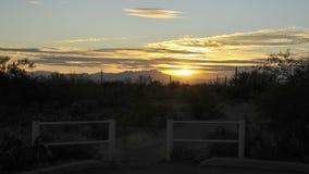 Caminhada no parque da montanha de Tucson no por do sol fotos de stock royalty free
