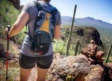Caminhada no parque nacional de Saguaro Fotos de Stock Royalty Free