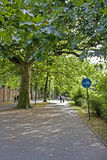 Caminhada no parque no outono Imagem de Stock