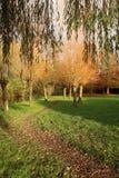 Caminhada outonal através de um parque em Vitre França Imagens de Stock Royalty Free