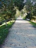 Caminhada perto do rio imagens de stock