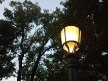 Caminhada romântica agradável sob a luz amarela Imagens de Stock Royalty Free