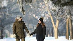 A caminhada romântica de um par em uma neve estaciona no tempo maravilhoso do inverno video estoque
