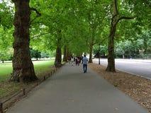 A caminhada se alegria Fotografia de Stock Royalty Free