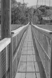 Caminhada transversalmente Imagem de Stock Royalty Free