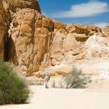 Caminhadas beduínas entre as rochas em uma garganta do deserto em Egito Dahab Sinai sul imagens de stock royalty free