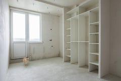 Caminhadas de gato através de uma sala vazia em uma construção nova Imagens de Stock