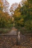 Caminhadas do outono imagens de stock royalty free