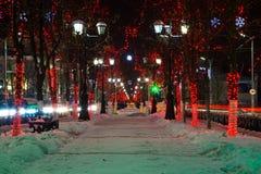 Caminhadas em uma aleia da noite Fotografia de Stock