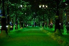 Caminhadas em uma aleia da noite Foto de Stock
