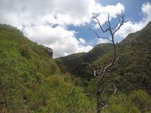 Caminhando as serras Chicas na casa Bamba lavre San Roque, rdoba do ³ de CÃ, Argentina fotos de stock