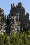 Caminhando em Custer State Park, South Dakota fotos de stock