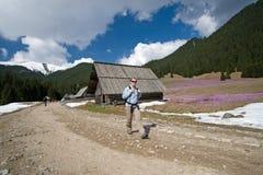 Caminhando em montanhas de Tatry, Poland fotos de stock royalty free
