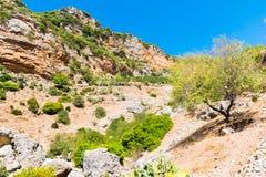 Caminhando em Rif Mountains de Marrocos sob a cidade de Chefchaouen, Marrocos, África imagem de stock
