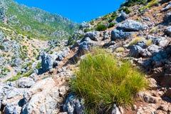 Caminhando em Rif Mountains de Marrocos sob a cidade de Chefchaouen, Marrocos, África imagem de stock royalty free